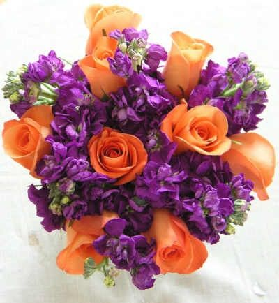 Peach Roses and Purple Stock.