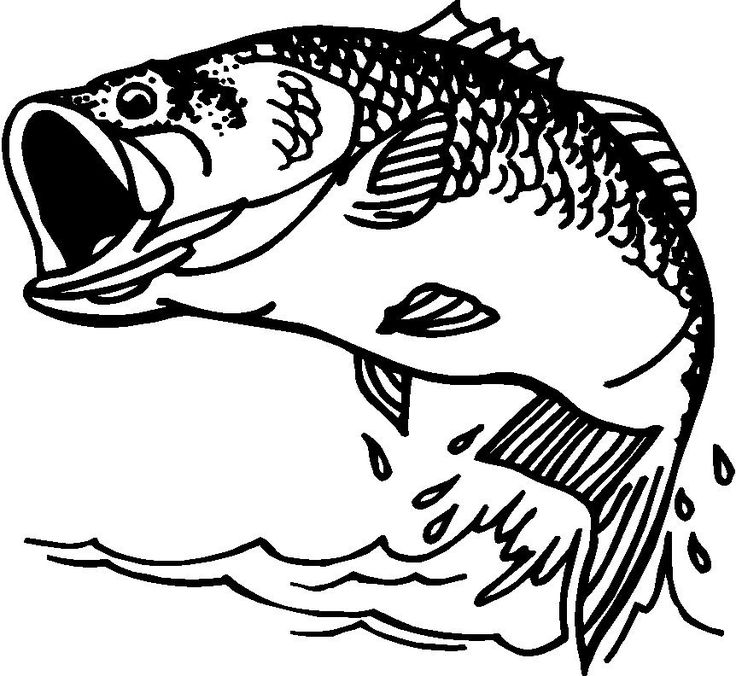 Bass fish clip artbass fish clipart from votes quoteko for Fish scenery drawing