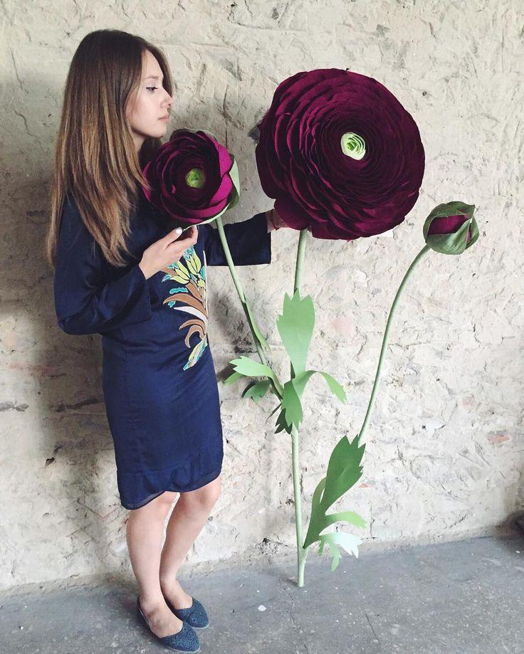 Веточка ранункулуса почти в мой рост) этот цветок такой нежный и утонченный…