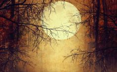 Samhain, the ancient Irish festival that became Halloween as we know it, was an important date in Irish lore.