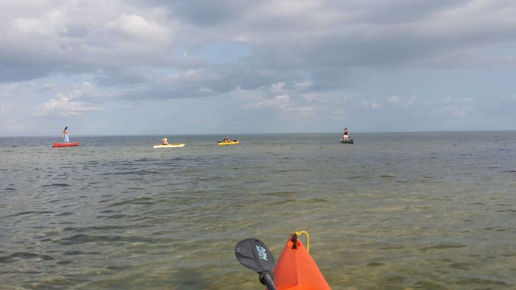 Kayaking in St. Pete area. Have a sand bar party!! Please visit homebyhollyboutique.etsy.com for all your beach bag needs.