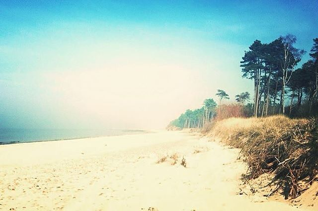 "via. @gosiapatrini  ""Paradise #paradise#heaven #bluesky #thesun #springtime #spring #nature#lovenature#sabado#peaceful #chillout #goodvibes #positivevibes #lovemylife #Balticsea#beautiful#polishsea#morze#morzebaltyckie#polskiemorze#""  więcej na: http://ift.tt/2k1V00E"