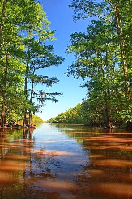 Blue Bayou, Louisiana - via Paisajes Hermosos's photo on Google+