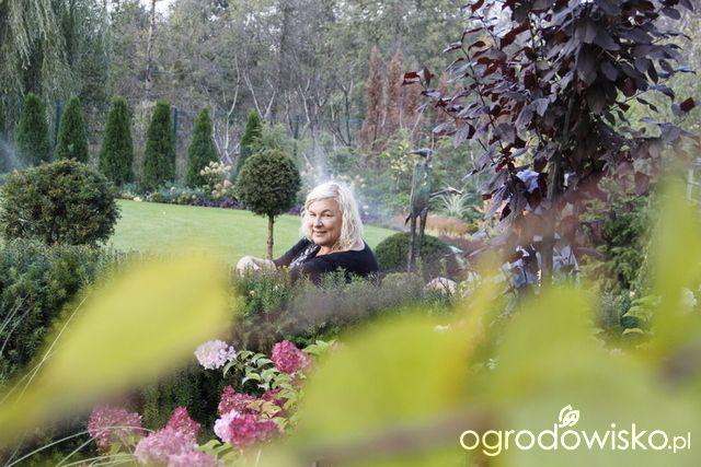 Ogród nie tylko bukszpanowy - część III - strona 1215 - Danusia Młoźniak - matka założycielka Ogrodowiska
