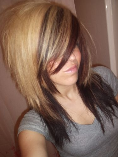 two-toned hair, maybe I'll do this next time with my hair...: Hair Ideas, Hairstyles, Blonde, Hair Colors, Hair Styles, Hair Cut, Two Tones, Haircut