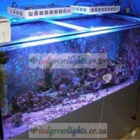 Purchase 165W LED Aquarium Lamp For Coral Aquarium Tank