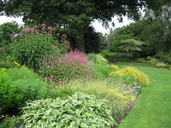Ornamental Landscaping Bushes : Mixed border planting style typical plants