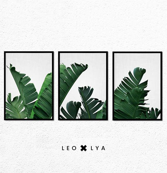 Banana Leaves Prints Set Of 3 Prints Botanical Print Set Tropical Wall Art Decor Leaf Printable Art Plant Photography Green Leaves In 2020 Botanical Print Set Banana Leaf Print Tropical Wall Art