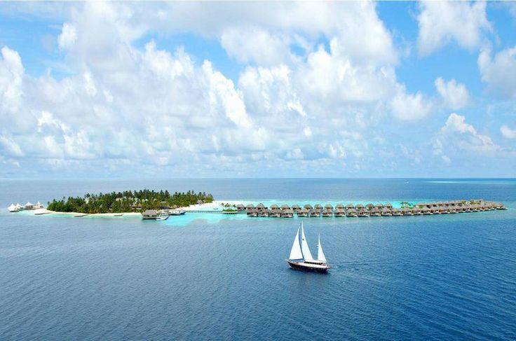 Отдых а-ля Робинзон Крузо на Мальдивах Гостиничный комплекс состоит из 110 вилл которые находятся на песчаном пляже. Все постройки выполнены из дерева бамбука лиан а в некоторых и вовсе лежит песок. Каждый из номеров оборудован интернетом мини-баром кондиционерами а некоторые  террасами с гамаками и ванными на открытом воздухе.  #maldives #maldivesislands #wretreat #spa #sparesort #relaxing #bluewaters #relaxationtime #luxurious #wanderful_places #luxuryvacation #welltraveled…