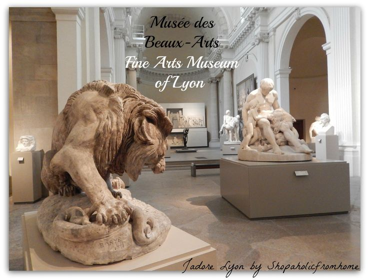 #FineArts Museum of Lyon I have found 20 top #Museums in #Lyon! Do you know any other worth visiting? Feel free to share with others! These are great places to visit in Lyon.   http://shopaholicfromhome.com/so-many-museums-in-lyon/  #jadorelyon #thingstodo #visitLyon #visitFrance