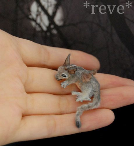 Another fantasy piece by *Reve*....cute little dragon....Ahh I want one :-)