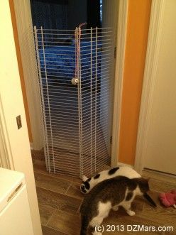 DIY very tall cat gate made from wire closet shelving.  Put a bell on top to know if someone's trying to climb.