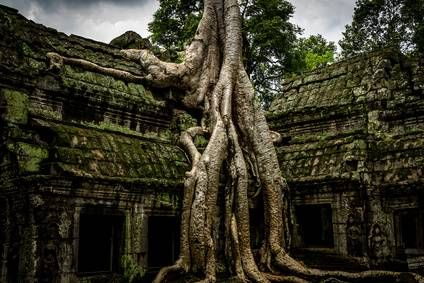3 días - 2 noches  Circuito de 2 noches visitando los maravillosos templos de Angkor, en Siem rep. Circuito con guía de habla española y en media pensión.   Salidas diarias  Precio 235€  http://www.tusofertasdeviaje.com/oferta/viaje/camboya/18130/extension_a_los_templos_de_angkor_sin_vuelo_internacional