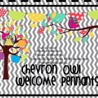 These cute whimsical owls and cheerful colors will help to welcome students, parents and visitors to your classroom! This banner can also be used f...