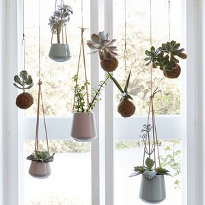 Set Of Two Hanging Ceramic Planters With Leather Straps - pots & planters