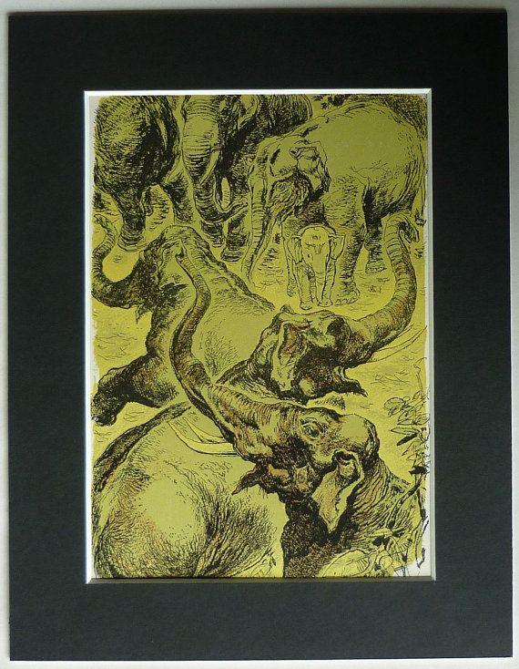 380 best Antique Prints, Vintage Prints for Home Decor images on ...