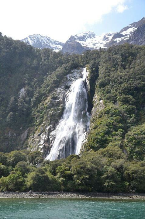 Milford Sound, NewZealand. If you like our photos, like us on FB www.facebook.com/trendstravel #MilfordSound #SouthernIsland #NewZealand #waterfall