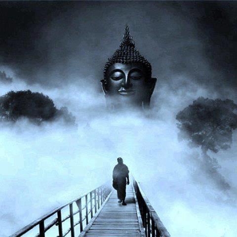 #Buddha in the mist