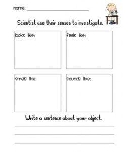 Science Observation Sheet