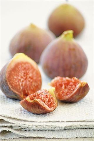 Figs/Vye