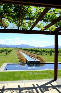 12months12countries: Villa Maria Winery, Marlborough, NZ