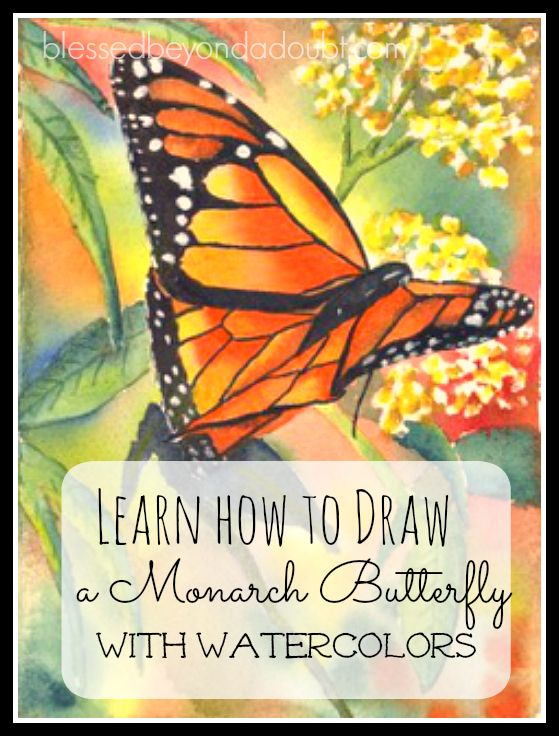 FREE Watercolor butterfly tutorial! Is so lovely!