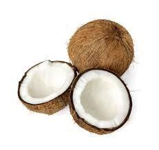 Kokosnoot stelen - Ook op de Bahama's worden spelletjes gespeeld en  de prijzen liggen al in het spel klaar.