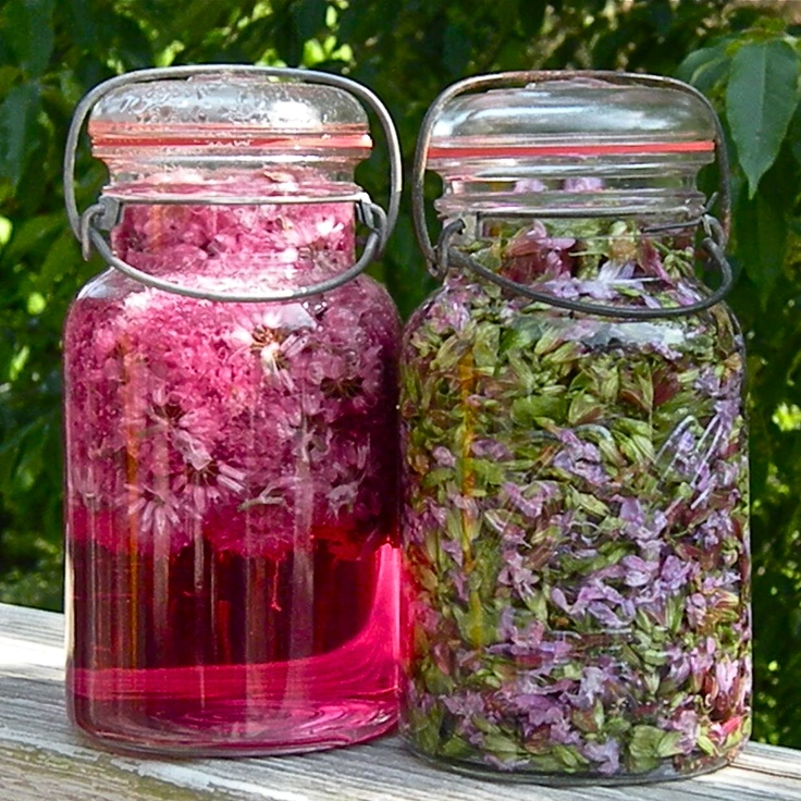 vinegar infused with sage & chive blossoms
