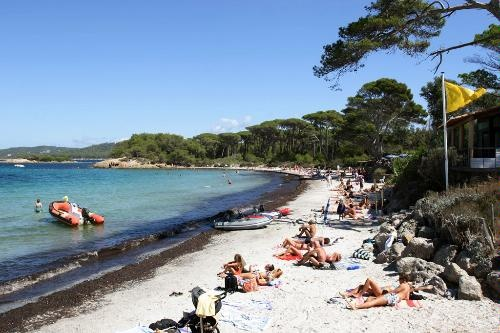 French Riviera's Best Beaches: 5 Med Escapes -   Ile de Porquerolles, Hyères    A short boat crossing from the Hyères peninsula leads you to an island of pine trees, vineyards, walking and cycling trails, and several small, sandy beaches. Rent a bicycle and choose a destination: the silvery sands of the Plage d'Argent; Plage de la Courtade, ideally situated by Fort Ste-Agathe; or beautiful Plage Notre Dame, the island's biggest beach, bordered by pines and furnished with a seasonal…