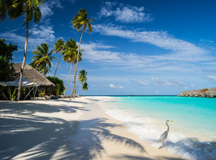 Best Places To Travel In Carribean For Cheap