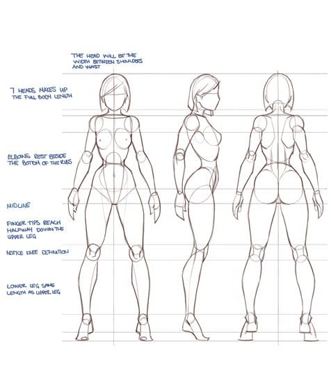 Drawing the human figure drawing in photoshop via pincg com anatomy class pinterest character design references female character design and design