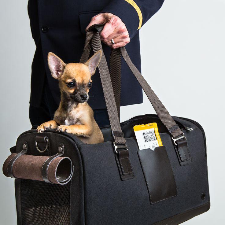 Dog Flight Carrier