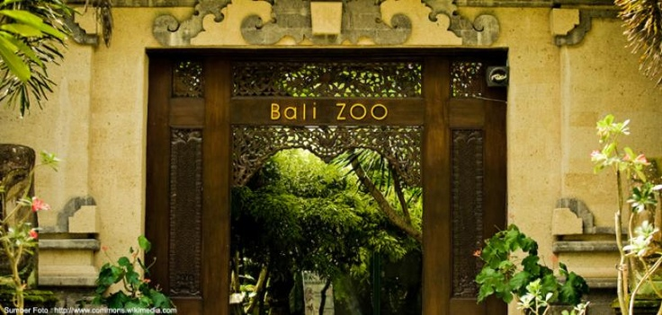 #Bali #Zoo. Get the deal here