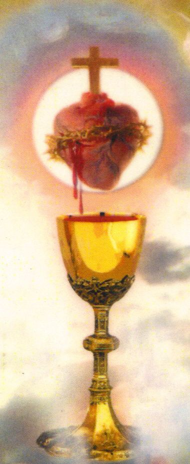 """Novena to the Precious Blood, Day 6 - """"Eternal Father, I offer you the merits of the Most Precious Blood of Jesus, your Beloved Son and my Divine Redeemer, for all those who join with me in adoring and honoring it, and for all those who try to spread devotion to it. May the Blood of Jesus remind me of God's sacrifice to save me and carry me to his glory in heaven. Amen..."""" - Devotions 