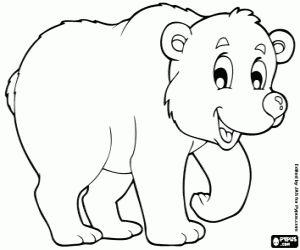 Omalovánka Bílý medvěd