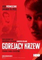 Andrzej Wajda nie jest jedynym polskim reżyserem, który walczyć będzie o Oscara w kategorii najlepszy film nieanglojęzyczny. Na statuetkę ma też szansę Agnieszka Holland.