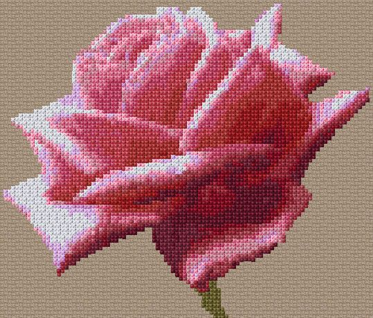 Rose 8 Free Cross Stitch Pattern
