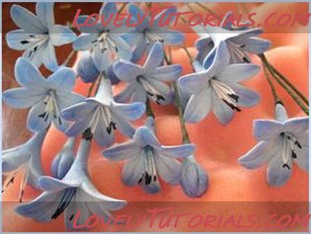 """Агапантус"" - Agapanthus (Lily of the Nile) flower making tutorial Gum Paste"