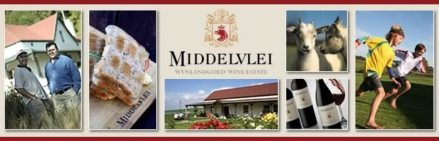 Middelvlei Wine estate in Devon Valley