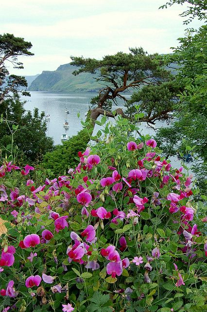 Portree, Scotland ༺✿ Portree is the largest town on Skye in the Inner Hebrides of Scotland.