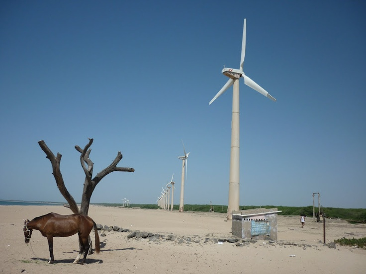 Of wind and its horse power