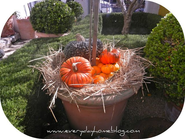 Fall Yard Decor {... The Everyday Home