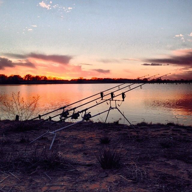81 best images about photos on pinterest beautiful for Lake fork fishing hot spots