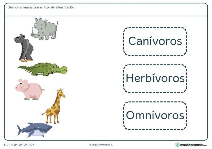 ¿Qué alimentación llevan algunos de los animales más conocidos? Descubrelo con…