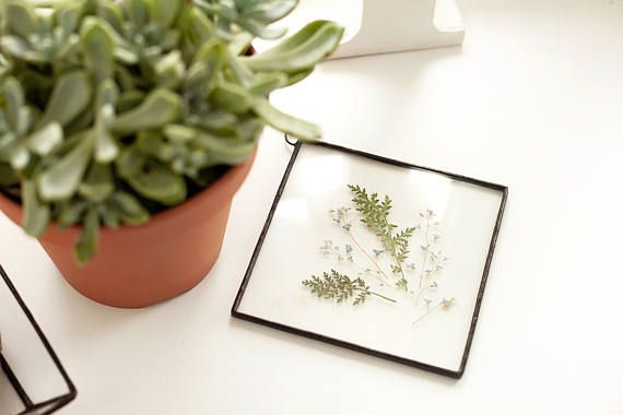small glass square panel with forget-me-nots and green fern leaves you can hang it on the wall  size: 12 x 12 cm  materials: glass, tin solder, patina, pressed flowers  you might also like: https://www.etsy.com/ru/listing/530607001/scandinavian-decor-stained-glass-panels?ref=shop_home_active_11   all items in my store are handmade by me any purchase will also come to you in craft paper envelope or box with WWHeart logo  *** please, take care of glass decor t...