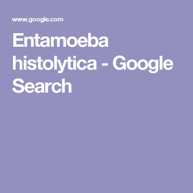 Entamoeba histolytica - Google Search