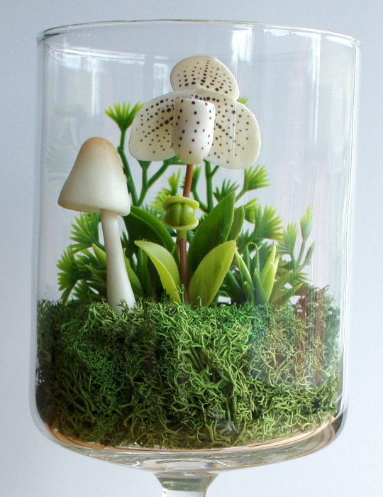 White Lady Slipper Orchid Terrarium in Repurposed by MissMossGifts, $29.00