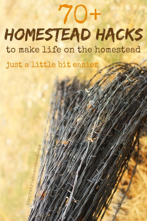 70+ life hacks for homesteading, hobby farming, and more! These homestead hacks will make life on the farm just a little bit easier.