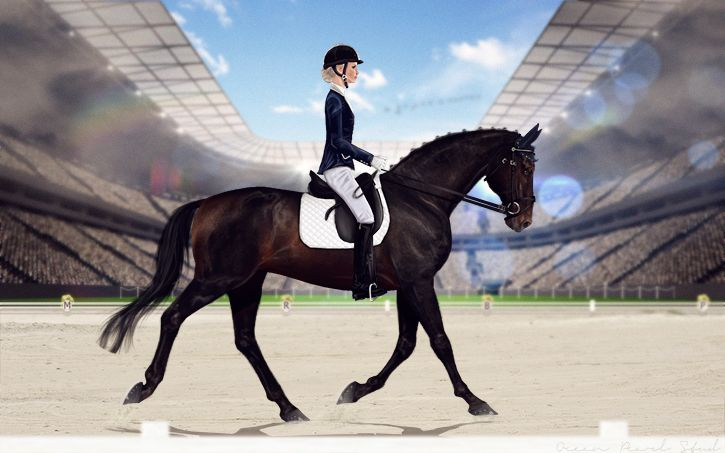 Kraymir's Entry for the Cecil Dressage Showcase