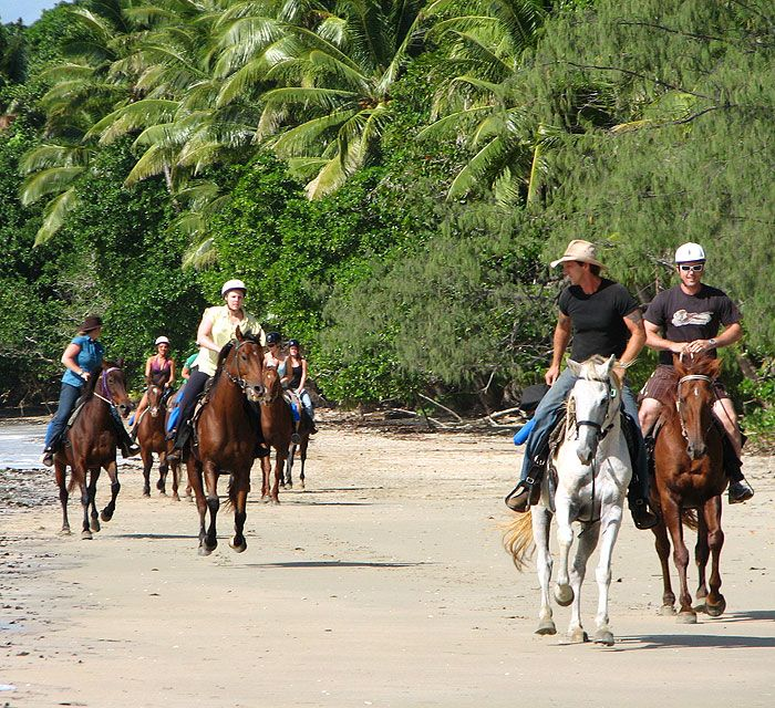Horse riding over the beach and through the rainforest !! :)
